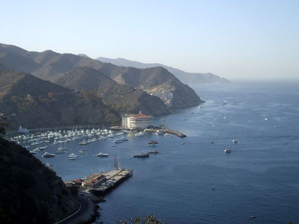 A photo I took at Catalina Island in October of 2013.