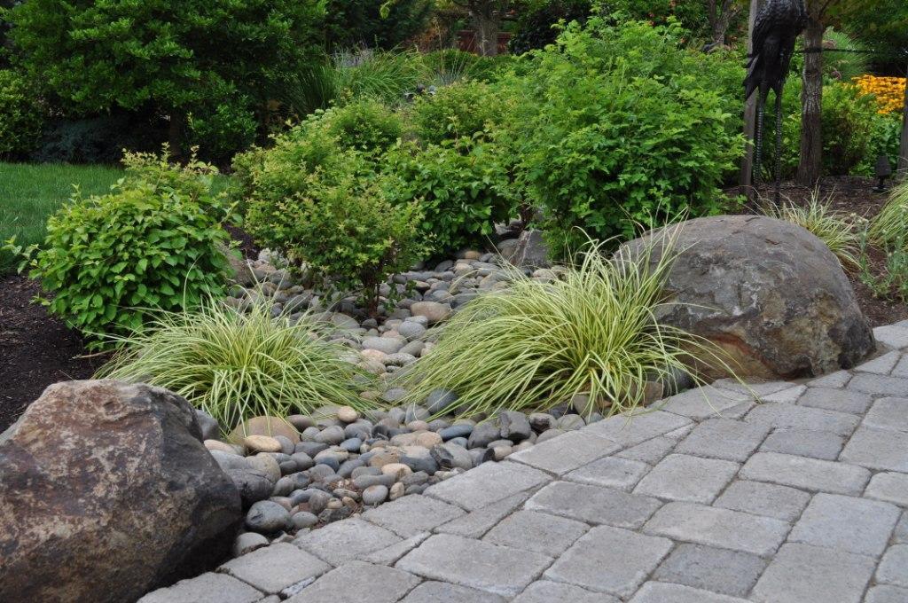 Landscape Design And Rain Gardens