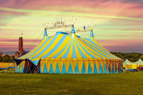 Injured at the Circus? - Wagner McLaughlin | Attorneys at Law