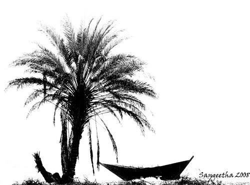 Memoirs of Voyage by SangeethaCan