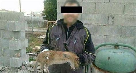 Encuentran en Tarragona una rata gigante que pesaba dos kilos y medía medio metro. El Comercio