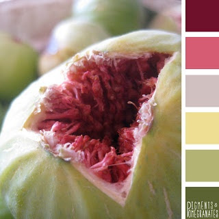 Kitchen color palette - Fig ; Cyprus. Pigments & Pomegranates / color