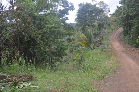 2.47 ACRES - Affordable Lot With Small Ocean View Near Pavones!!! - Costa Rica Real Estate