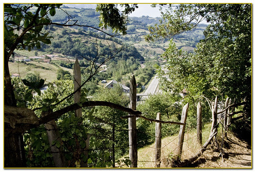 paisaje desde el camino