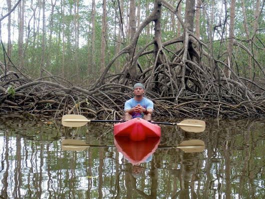 Nature and Relaxation - the perfect mix in the Mangroves