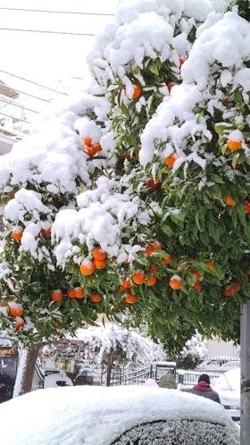 Νεα Σμυρνη Χιονια - Olh Attikh Sta Leyka H Xara Twn Paidiwn Alt Gr