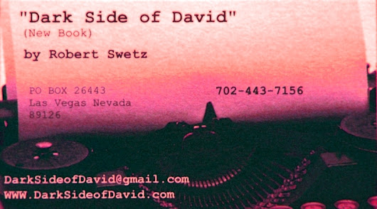 Sex Offenders Novel Dark Side of David Robert Swetz | Dark Side Of David