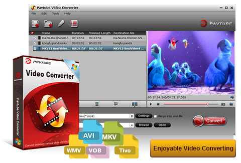 Pavtube Video Converter- Best SD and HD videos Solution