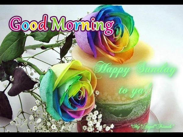 Good Morning Happy Sunday To You Pictures Photos And Images For