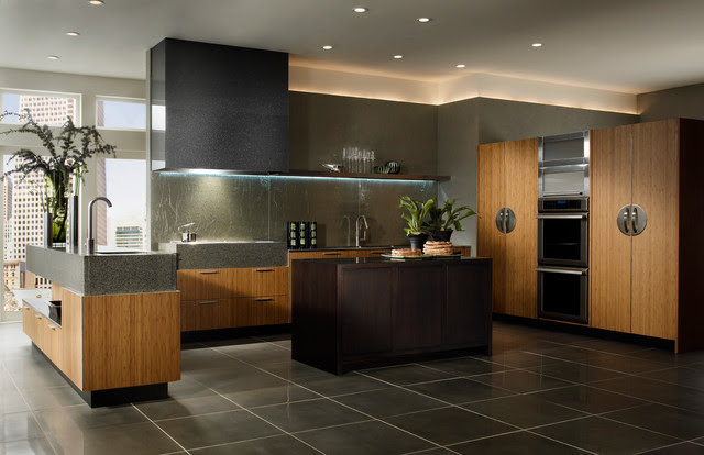 Wood Mode Linear Solutions Kitchen Contemporary
