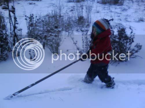 Harvesting snow