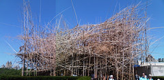 Doug and Mike Starn - Big Bambú (composite)