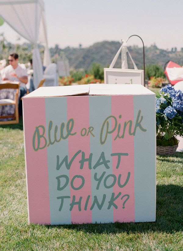 Giuliana And Bill Rancics Pink And Blue Baby Shower Inspired By This