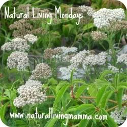 Natural Living Mamma