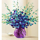 20 Stems Ocean Breeze Orchids 20 Stems with Purple Vase - Flowers by 1-800 Flowers