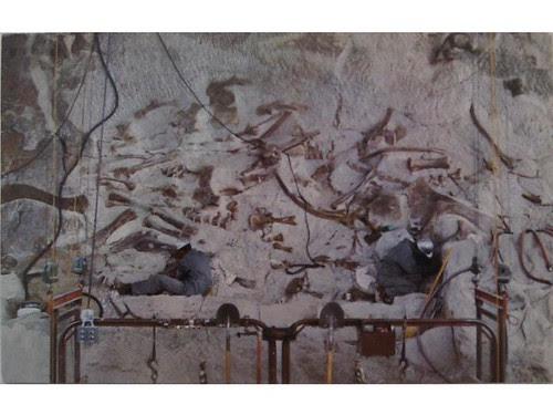 Antique postcard: DInosaur National Monument