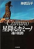 星降るカミーノ―魂の旅路