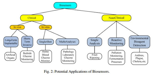 Biosensor Applications