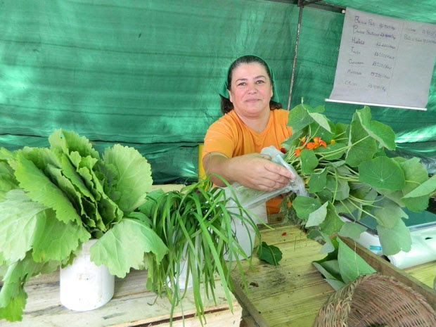 A agricultora Ana do Mel leva os produtos orgânicos colhidos pelo grupo para serem vendidos nas feiras (Foto: Gabriela Gasparin/G1)