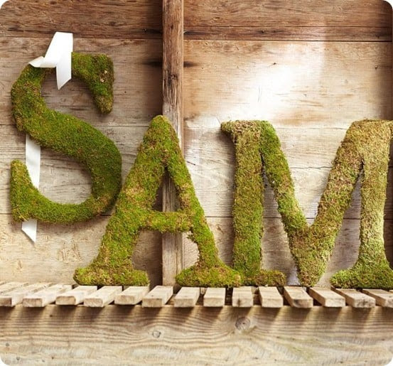 Live Moss Letters from Pottery Barn