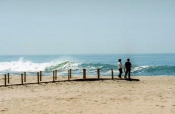 Os proprietários dos 31.696m2 da praia de Armação de Pêra são os dez herdeiros de João da Costa Sant'Ana Leite