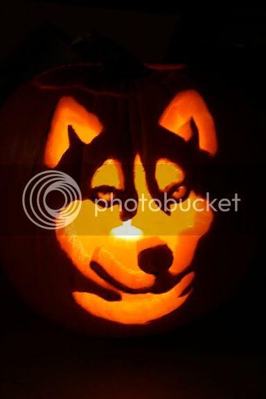 The husky dog blog autumn hike for Pumpkin eating pumpkin stencil