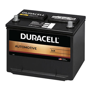 Duracell Automotive Battery Group Size 36r Sams Club