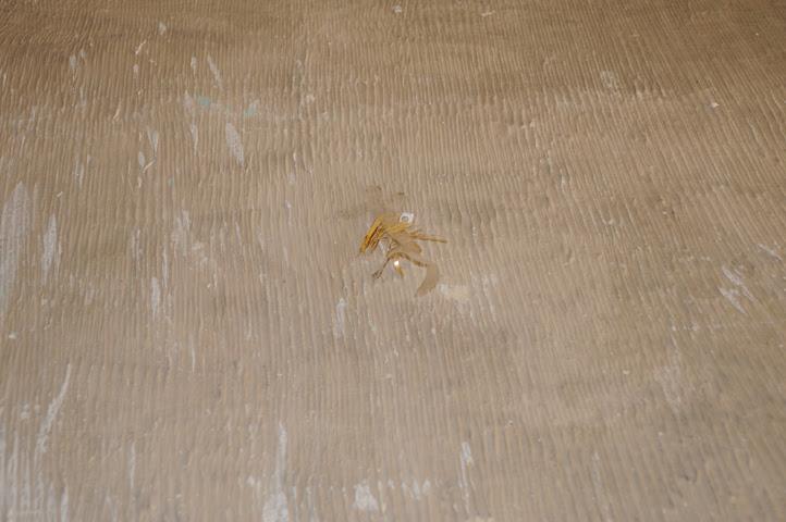 lavapies apartment house_0598 web
