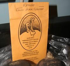 black radish seed packet
