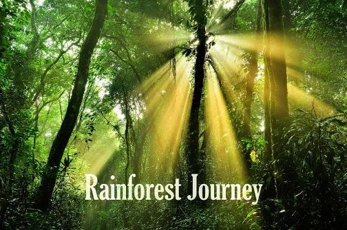 Rainforest Journey EdTechLens Review