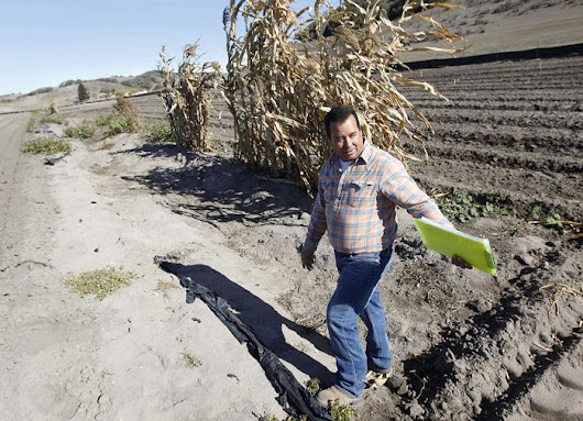 Farmers prepare land for El Nino