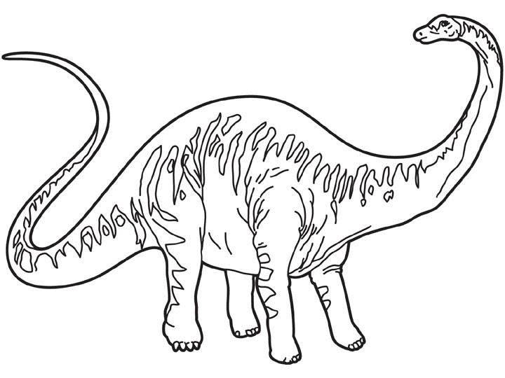 Dibujos Para Colorear Diplodocus Es Hellokids Com