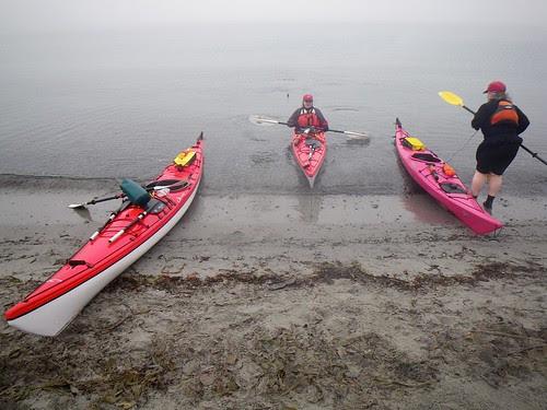 2008-11-30 The Fog 069