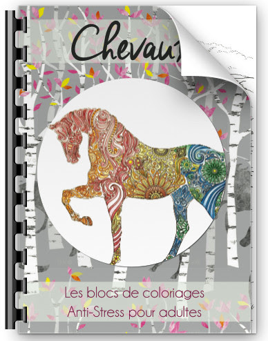 Cahier Coloriage Adultes Artisans Dart