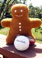 PD_GingerbreadManSnowball