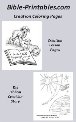 8800 Top Bible Coloring Pages For Creation  Images