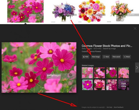 Google Promises To Make Changes To Image Search For Getty Images & Others