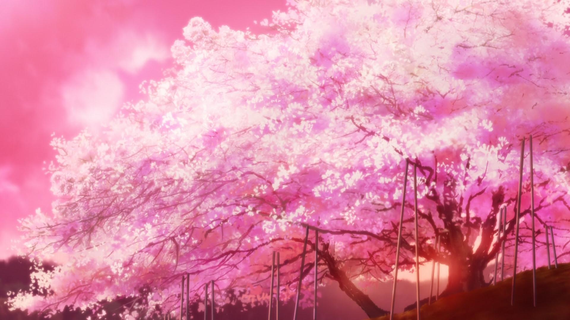 25+ Reddit Subtle Anime Wallpaper - Tachi Wallpaper