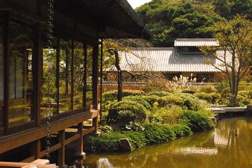 along the tea house