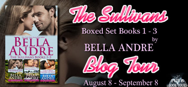 The Sullivans Boxed Set Banner 2