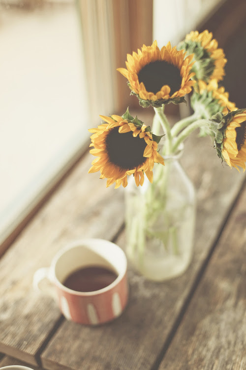 table, coffee, cup, flowers, break