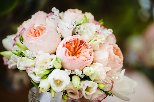 A Wedding Florist Offers Tips for Arranging, Selecting, and Taking Care of Peonies