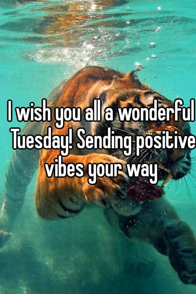 I Wish You All A Wonderful Tuesday Sending Positive Vibes Your Way