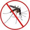 antimosquito-8
