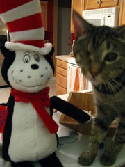Maggie with Tiff's Cat in the Hat
