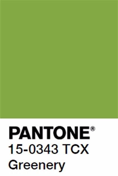 Introducing #Pantones