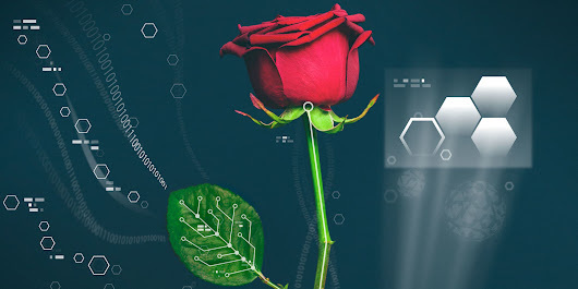 Scientists Just Grew Wires Inside Roses