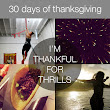 30 Days of Thanksgiving – Day 11: Thrills | Bits of Beauty