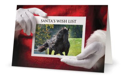 Santa's Wish List Holiday Cards