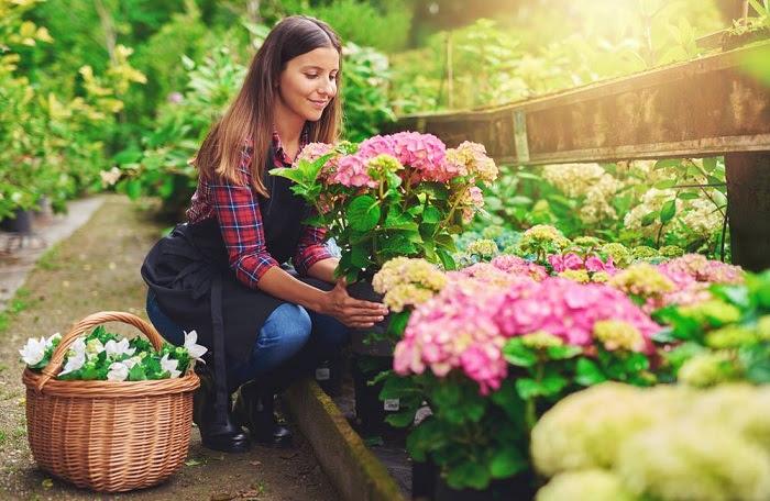 mujer captada al hacer jardinería en su casa con flores